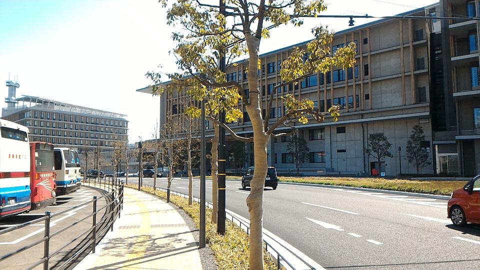 県庁舎駐車場へ右折