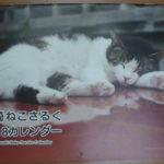 長崎ねこさるくカレンダー レビュー