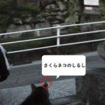 お猫様を訪ねて…@にゃがさき Vol.3(ここにもさくらネコが!)